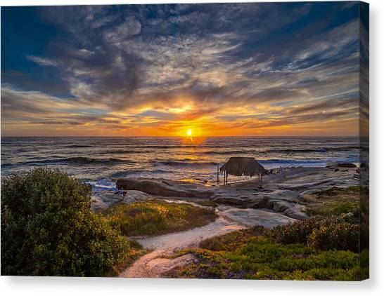 Windansea Canvas Print by Peter Tellone