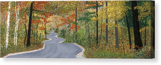 Winding Road Canvas Print