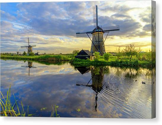 Ducks Canvas Print - Windmills by Chad Dutson