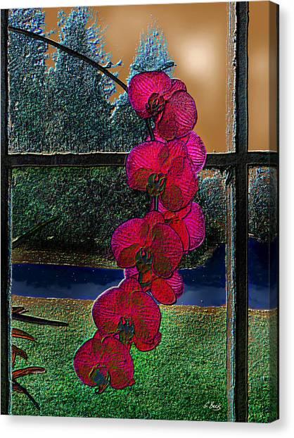 Window Dressing Canvas Print by Gordon Beck