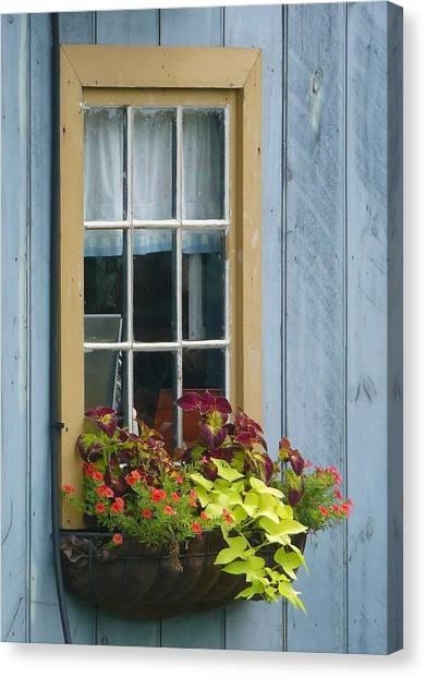 Window Flower Basket Canvas Print