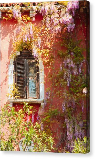 Window In Venice With Wisteria Canvas Print by Michael Henderson