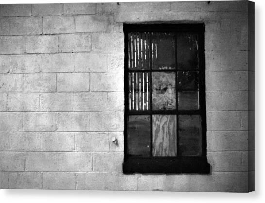 Window Pains Canvas Print