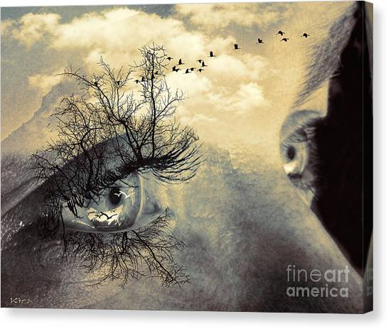 Window To The Soul Canvas Print