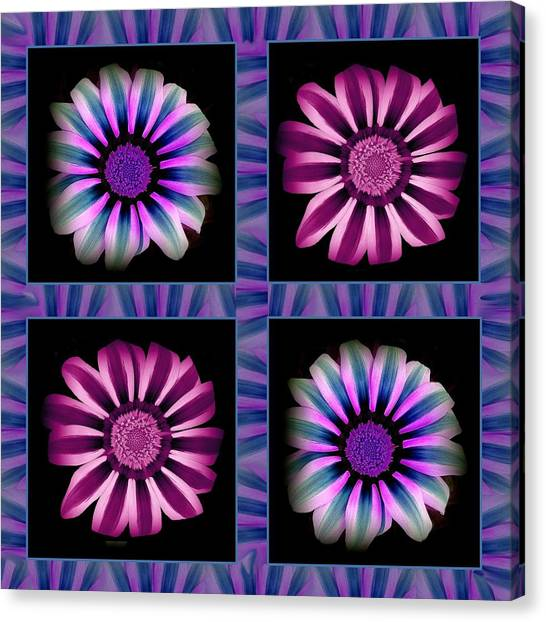 Windowpanes Brimming With  Moonburst Stripes Of Flowers - Scene 5 Canvas Print by Jacqueline Migell