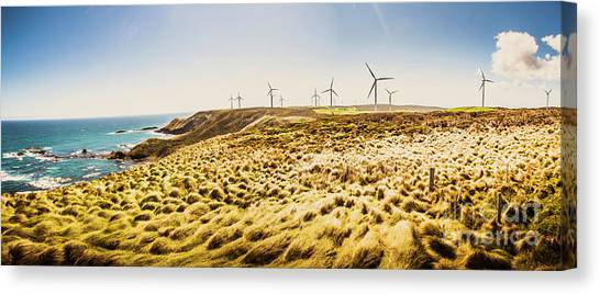 Energy Canvas Print - Windswept Tasmania by Jorgo Photography - Wall Art Gallery