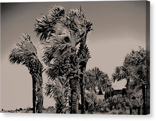 Windy Day At Beach Canvas Print