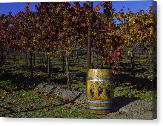 Wine Barrels Canvas Print - Wine Barrel In Vienyard by Garry Gay