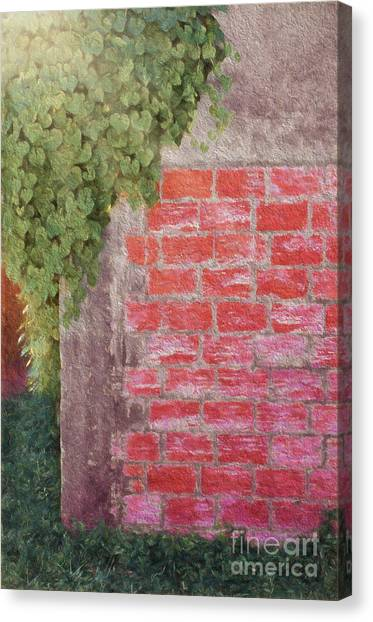 Wine Country Morning Canvas Print by Darla Rae Norwood