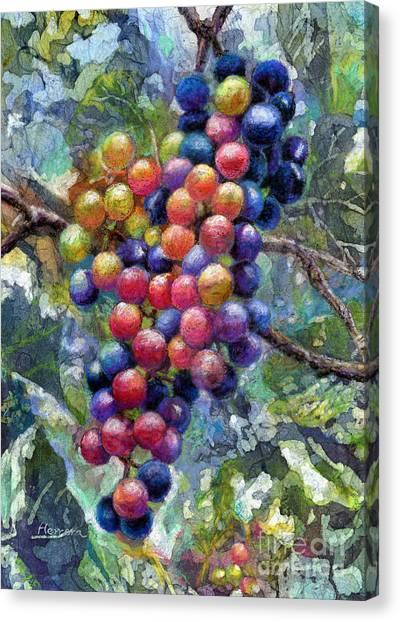Vine Grapes Canvas Print - Wine Grapes by Hailey E Herrera