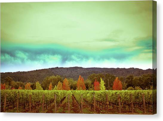Wine Art Canvas Print - Wine In Time by Ryan Weddle