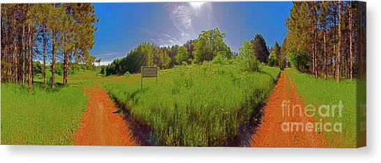 Wingate, Prairie, Pines Trail Canvas Print