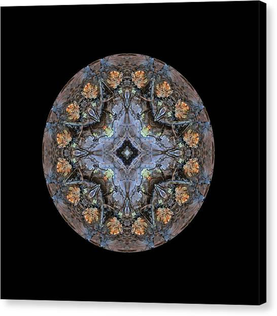Winged Creatures In A Star Kaleidoscope #1 Canvas Print