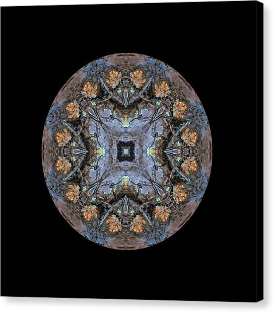 Winged Creatures In A Star Kaleidoscope #2 Canvas Print