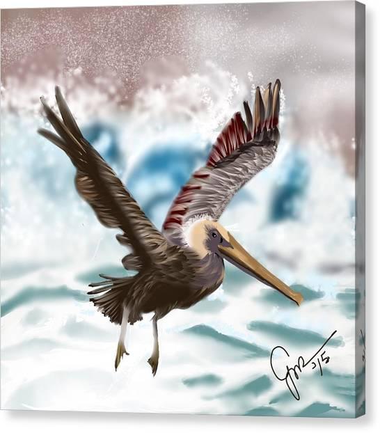 Wings IIi Canvas Print