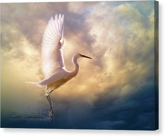 Wings Of Light Canvas Print