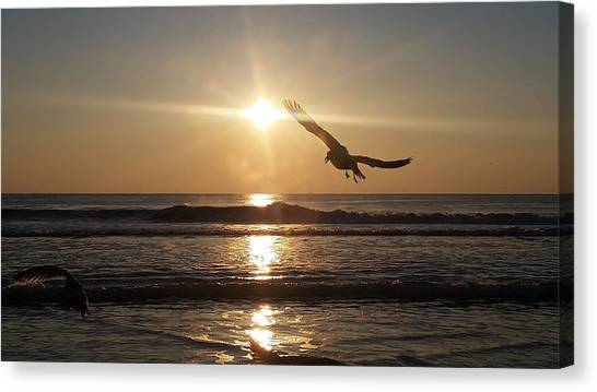 Wings Of Sunrise Canvas Print