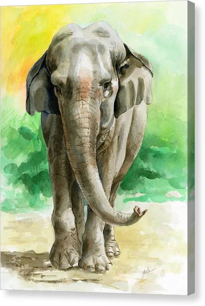 Wild Animals Canvas Print - Winky by Galen Hazelhofer