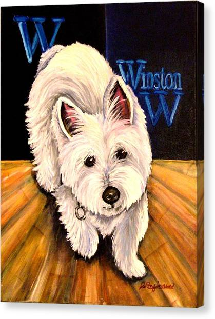 Winston Canvas Print by Carol Allen Anfinsen