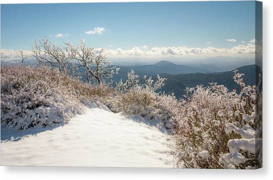 Winter Above The Land Canvas Print