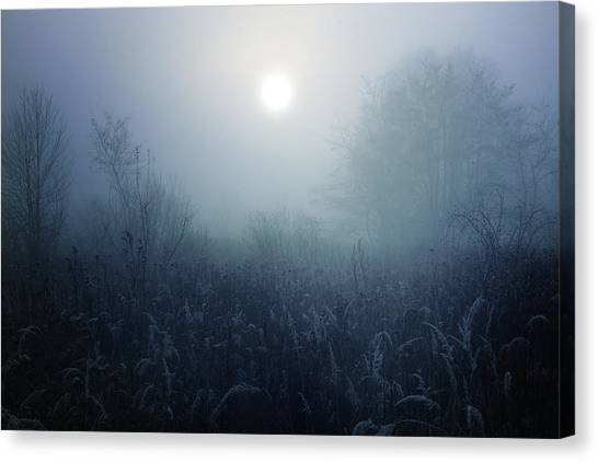 Frost Canvas Print - Winter Afternoon - Poland by Cambion Art