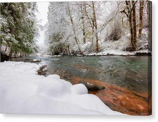 Winter Along Scoggins Creek  Canvas Print