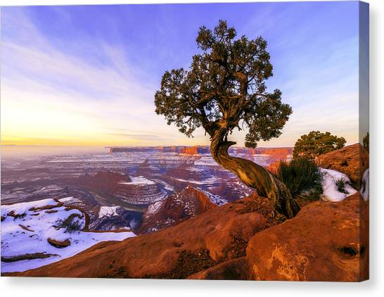 Cliffs Canvas Print - Winter At Dead Horse by Chad Dutson