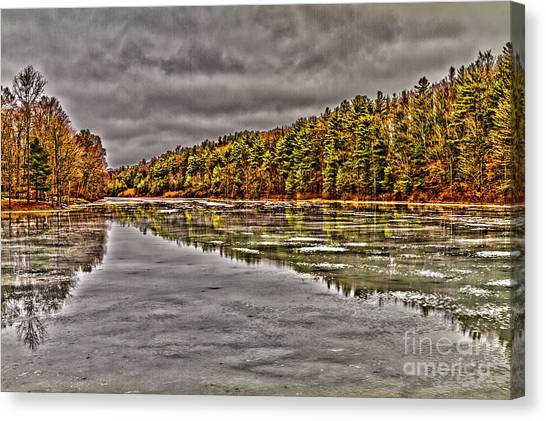 Winter At Pine Lake Canvas Print