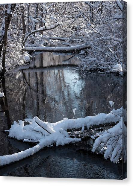 Winter At The Brook Canvas Print