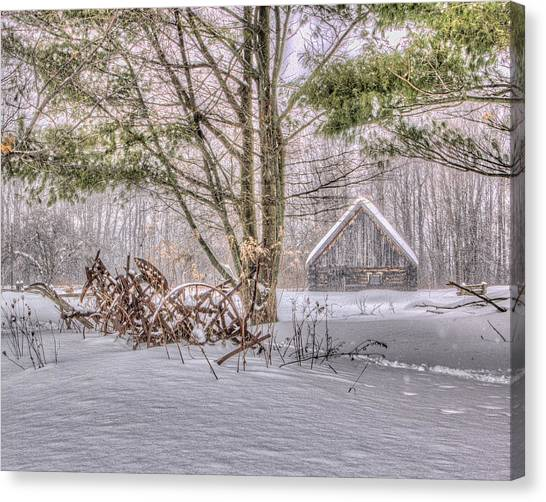 Winter At The Woods Canvas Print