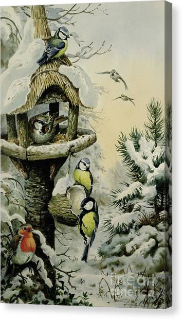 Blue Tit Canvas Print - Winter Bird Table With Blue Tits by Carl Donner