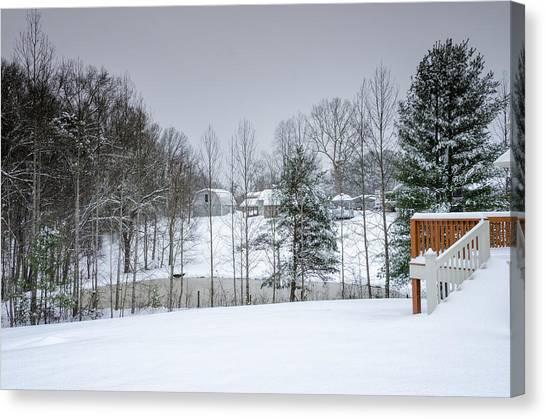 Blizzard Beauty Canvas Print