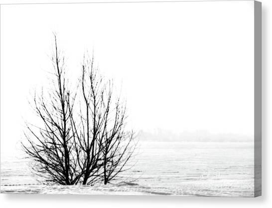 Winter Bones Canvas Print