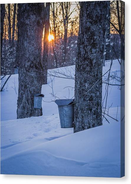 Winter Buckets Canvas Print