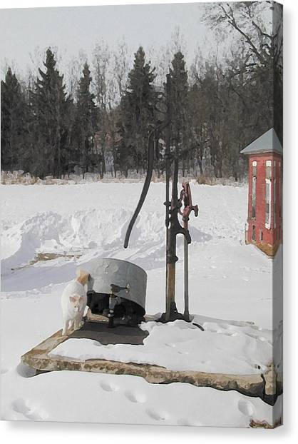 Winter Cat At The Pump Canvas Print by Laurie With