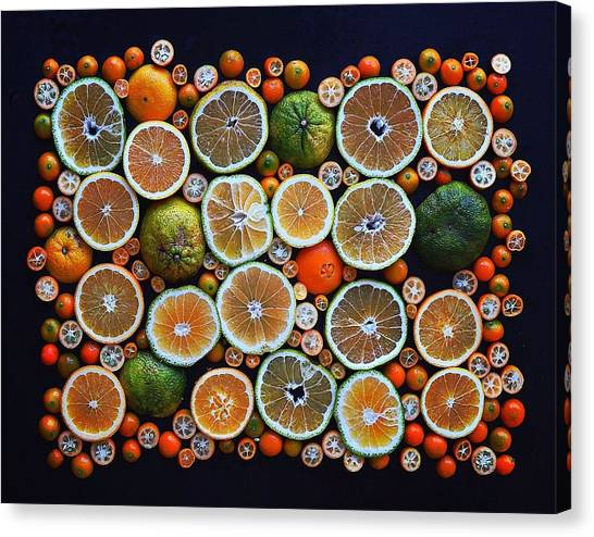 Winter Citrus Mosaic Canvas Print