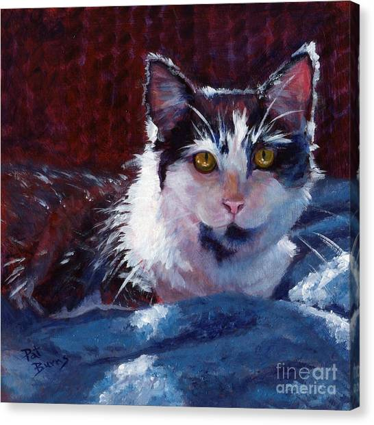 Winter Comfort Canvas Print