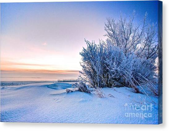 Prairie Sunrises Canvas Print - Dawn On A Prairie Winter by DJ MacIsaac