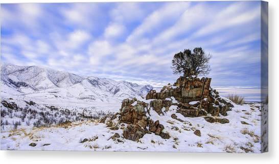 Desert Sunrises Canvas Print - Winter Desert by Chad Dutson