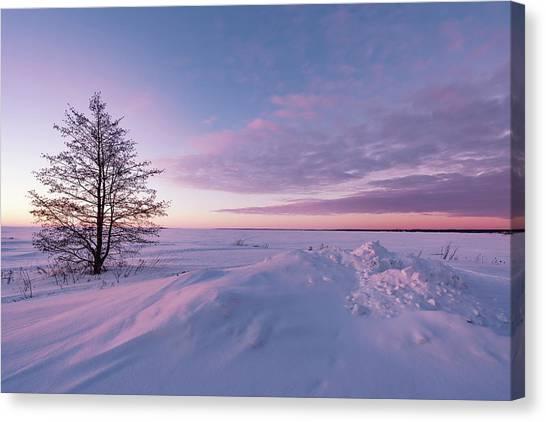 Winter Dreams Canvas Print
