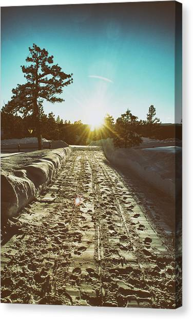 Canvas Print featuring the photograph Winter Driveway Sunset by Jason Coward