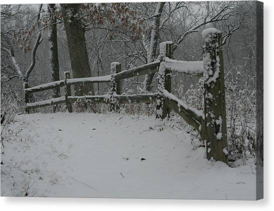 Canvas Print featuring the photograph Winter Fence Trail H by Dylan Punke