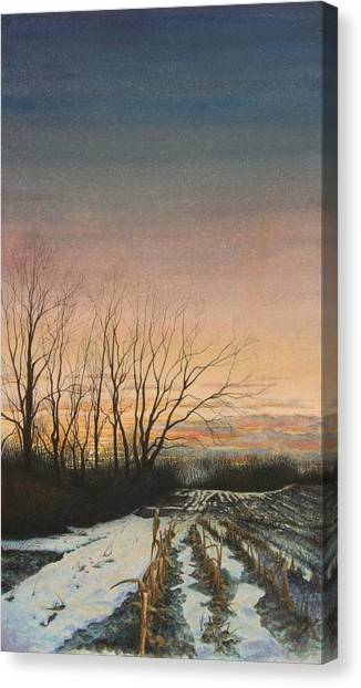 Winter Field Canvas Print by Stephen Bluto