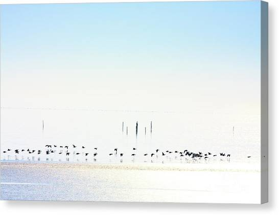 Winter Geese Frozen Ice Canvas Print