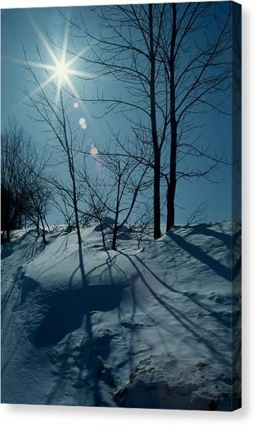 Winter Glow Canvas Print by Raju Alagawadi