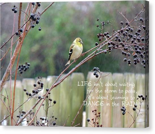 Winter Goldfinch In The Rain With Quotation Canvas Print