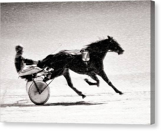 Winter Harness Racing Canvas Print