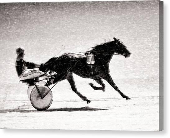 Winter Harness Racing Canvas Print