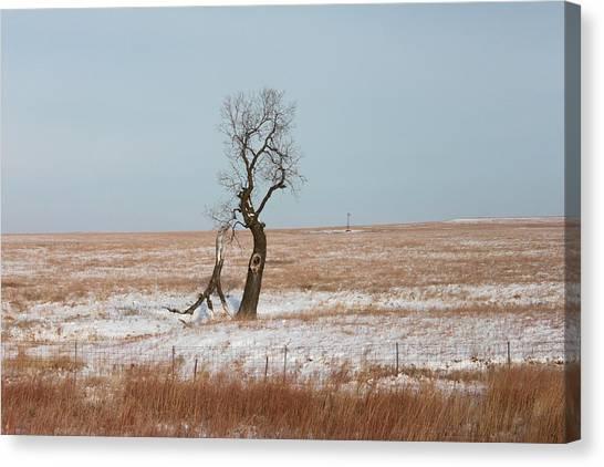 Winter In Kansas Canvas Print