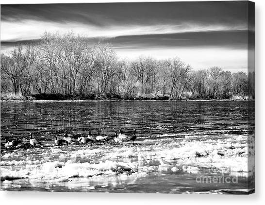Winter In The Delaware Valley Canvas Print by John Rizzuto